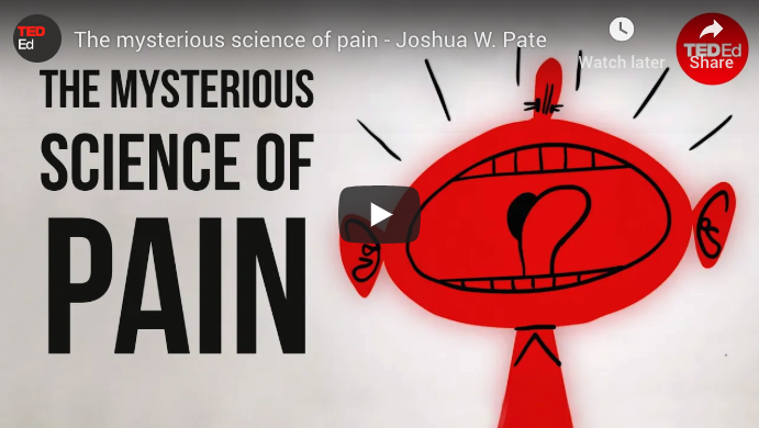 Mysterious Science of Pain Video
